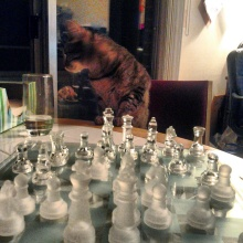 tag chess