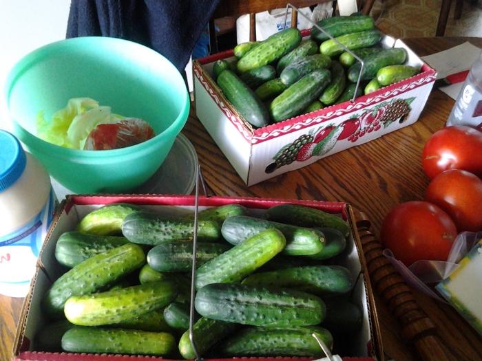 Future pickles!