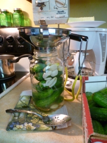Filling the jar with pickles and garlic.
