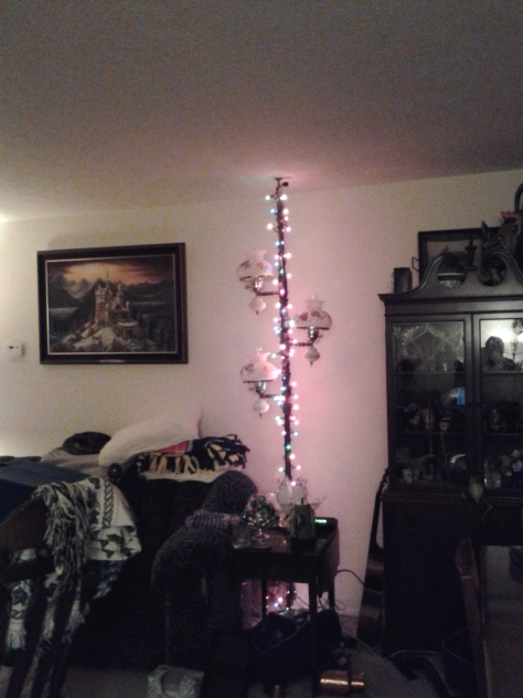 Then, I found some extra lights, sooooo I decided to decorate my light pole.